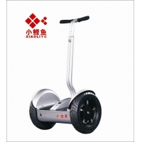 XLY-C2  小鲤鱼城市款思维车