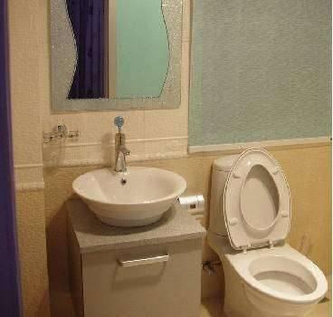 2010最受欢迎卫浴新型防水材料