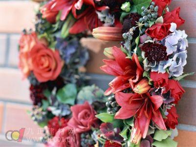 乌鲁木齐:家庭装饰带动花卉市场回暖