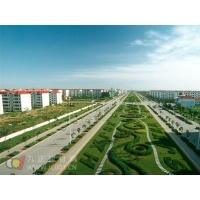 小米与中国绿化基金会合作