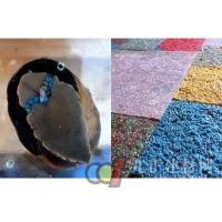 荷兰艺术家研制出蜗牛粪便制成的地板