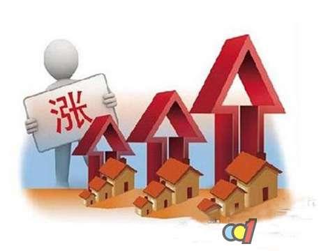 """原材料价格看涨,家居建材""""身价""""年前维稳"""