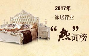 2017家居市场热词榜集锦