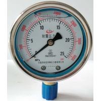 耐震压力表量程,精度,安装螺纹