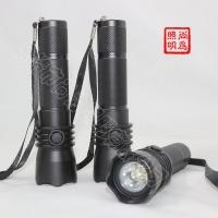 SW2102强光防爆电筒