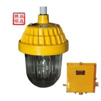 SW8300防爆平台灯,尚为分体式防爆平台灯