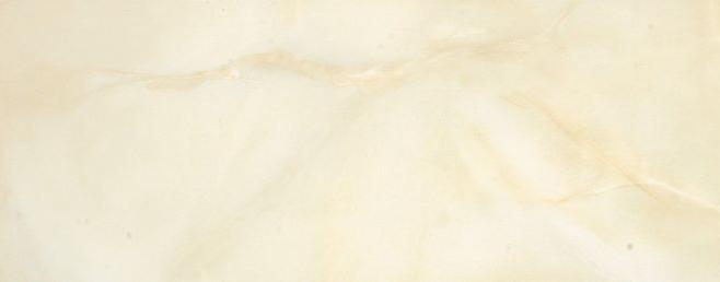 诺贝尔瓷砖 粹美系列WF26008 卫生间 墙砖