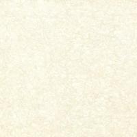 客厅瓷砖800*800全抛釉 出口及工程砖