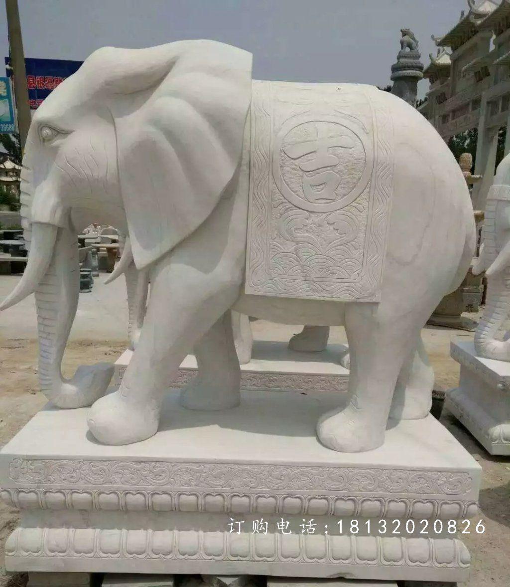 大象石雕,汉白玉大象雕塑 ,动物雕塑