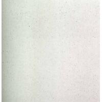 长城陶瓷微晶石系列VJSP1000G