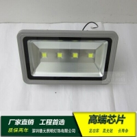 200W投光灯 LED户外照明灯 景观灯