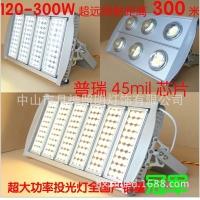 LED隧道灯100W/200W/300W