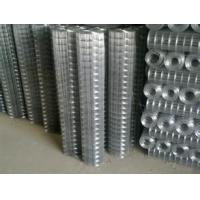 养殖电焊网,电焊网片,钢筋焊接网