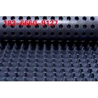hdpe滤排水板