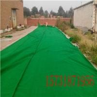 雾霾环保产品聚乙烯防风抑尘网挡风墙