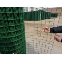 荷兰网 养殖家禽荷兰网 机场铁路围栏用网