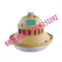 SBF6102-YQL40节能防水防尘防腐灯详细说明