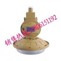 SBD1102-YQL40免维护节能防爆灯,荣升制造免维护防
