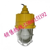 BAD83-H防爆高效节能无极灯,40w防爆无极灯制造商