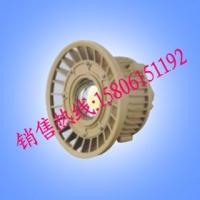 BAD85-S防爆高效节能LED灯,化工厂专用LED防爆灯