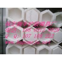 塑料护坡砖模具