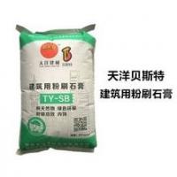 陕西天洋贝斯特干混预拌砂浆特种粘结砂浆耐水腻子石膏