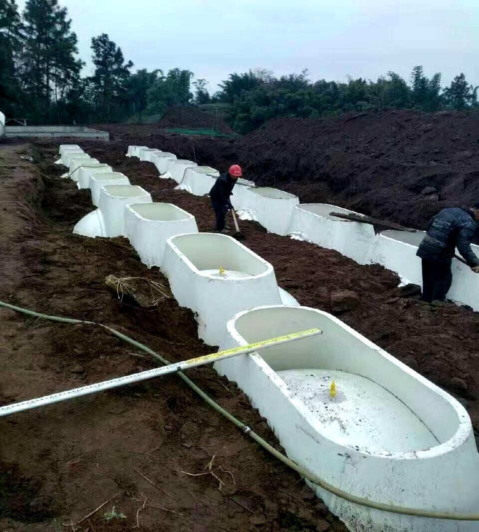 一级a爱大片免费视频地埋式多级发酵过滤净化池系统