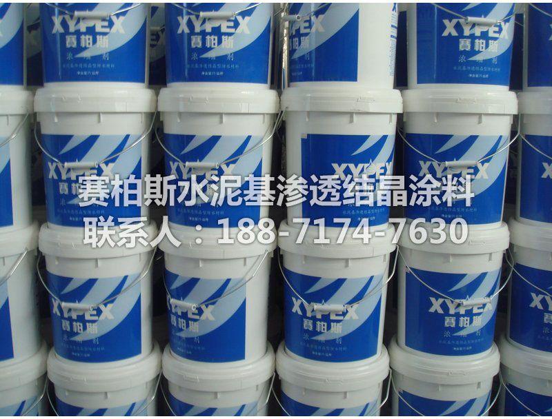 赛柏斯防水涂料 加拿大XYPEX混凝土渗透结晶型防水防腐
