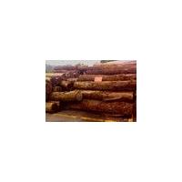 老挝红酸枝原木价格 批发直供 价格优惠