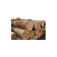 木材黄花梨30-40