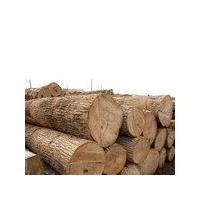 黄金檀原木材料