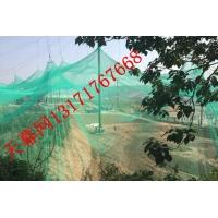 鸟语林网 骐骏天幕网动物园天目网不锈钢绳网聚乙烯网