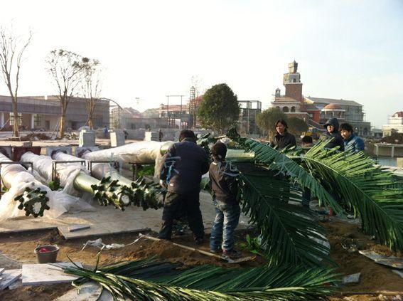 淮南市动漫主题公园仿真椰子树制作现场