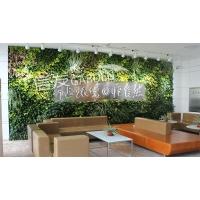 杭州植物墻 浙江植物墻公司 杭州墻體綠化公司 垂直綠化花盆