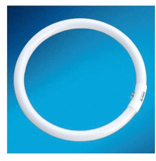 T5环型卧室用/客厅用节能荧光灯管