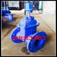 饮用水专用地下弹性座封闸阀 (7)