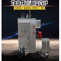 40kg燃油锅炉蒸汽发生器 全自动不锈钢小型柴油蒸汽锅炉烧水