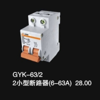 GYK-63 2 2小型断路器(6-63A)28.00