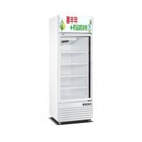 雄大制冷冰柜