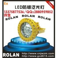 BC9305S-L20/L30/L40W LED防爆灯支架式