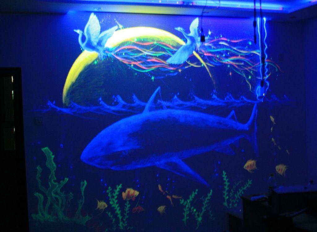 北京漆华仕紫光隐形颜料海底世界星空梦幻涂料