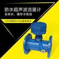 管道式超声波流量计防水型碳钢材质