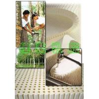 TALALAY工艺乳胶床垫