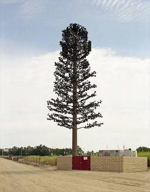 形式多样,有仿生树形