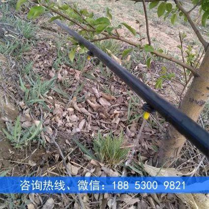 苹果树滴灌设备