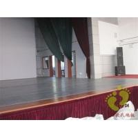 进口地胶 舞蹈地胶 体育地板,舞蹈地胶 舞蹈学校地胶