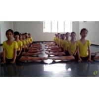 舞蹈地板胶 舞台地板胶 舞蹈地板 运动地板