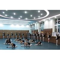 pvc地胶 芭蕾舞地胶 民族舞地胶 运动地胶 舞蹈地板