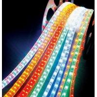 供应LED霓虹管彩虹管灯带,灯海灯会灯光节灯具