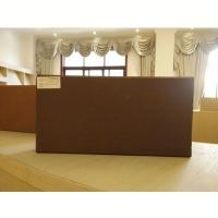 华蓉陶瓷-时尚烧结广场砖  150x300x50